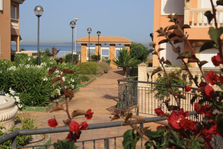 Diseño y mantenimiento de jardín en Son Verí, Llucmajor (Mallorca)